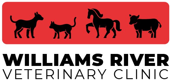 logo williams river